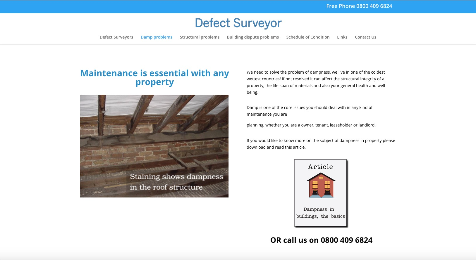 https://defectsurveyor.co.uk - Damp Problems
